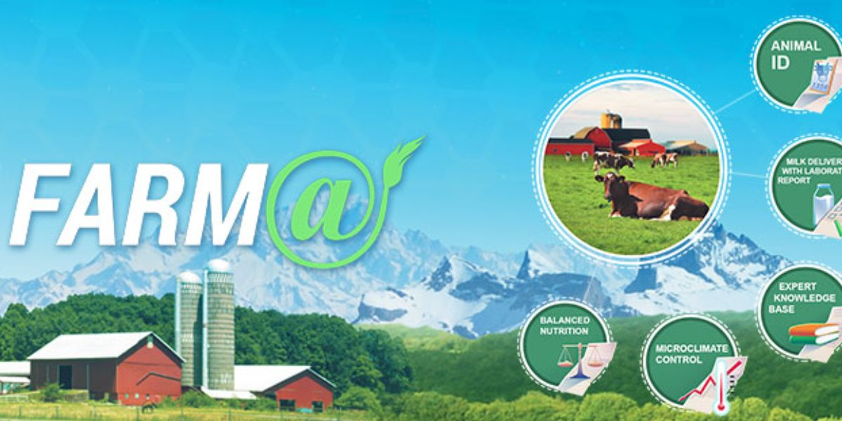 Farma our bold new product